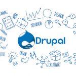 Drupal Web Developers