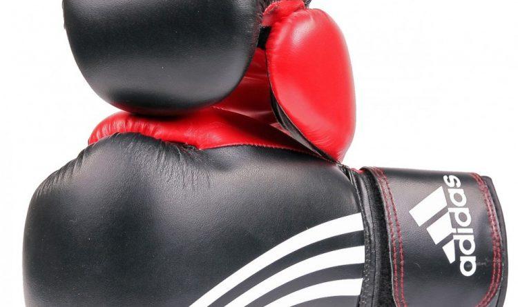 Adidas Aiba Boxing Gloves