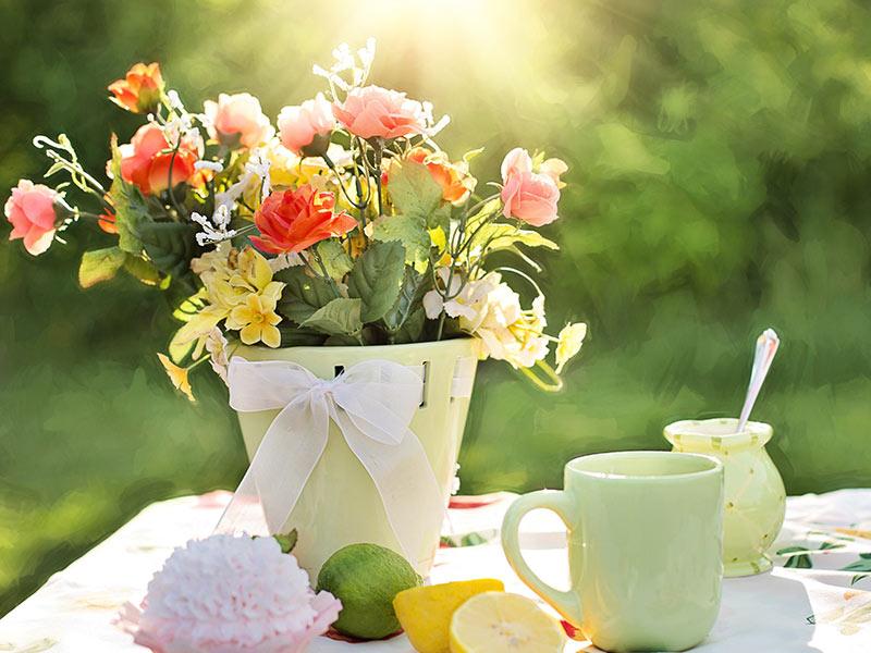 Esteemed Flowers Convey Sentiments