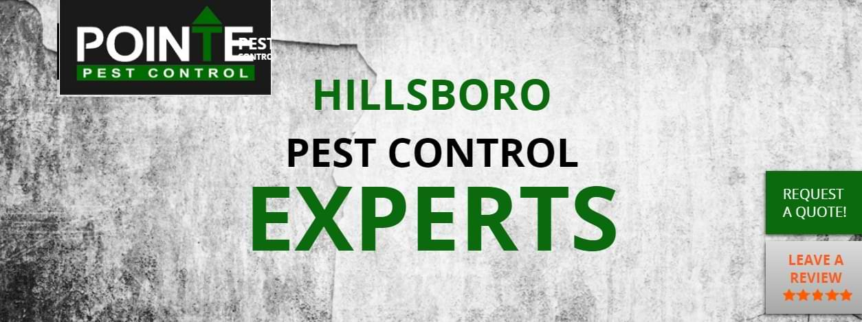 How to Select a Bed Bug Control Provider