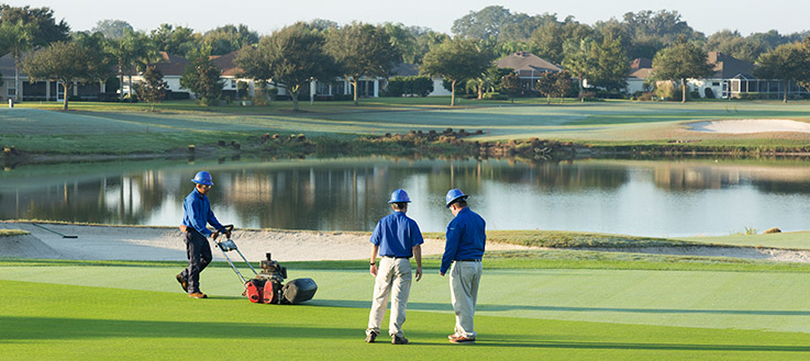 The Build-up of the Maintenance Process of a Golf Course