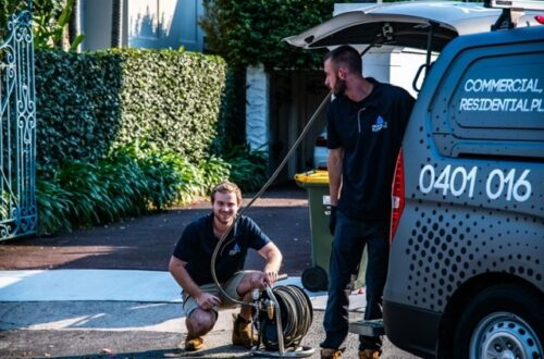 HOW TO CORRECTLY CARE FOR DOMESTIC PROPERTIES IN SYDNEY