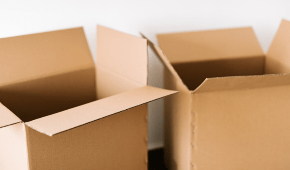 Rush Package Delivery Shipping