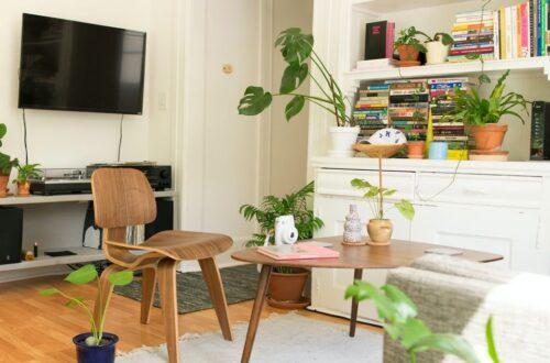 Buying Plywood Furniture